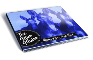 Blues Ain't That Bad by The Blue Mules